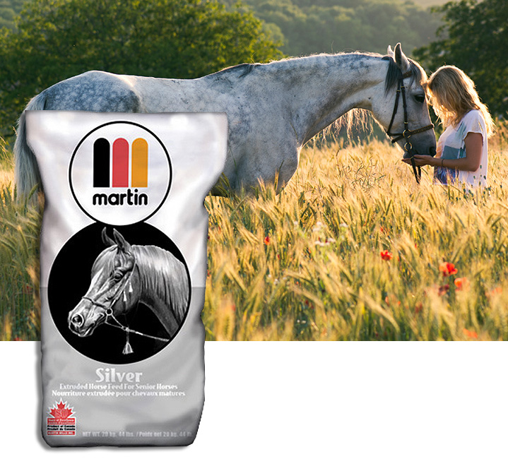 horse and feed bag