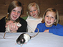 children and mouse